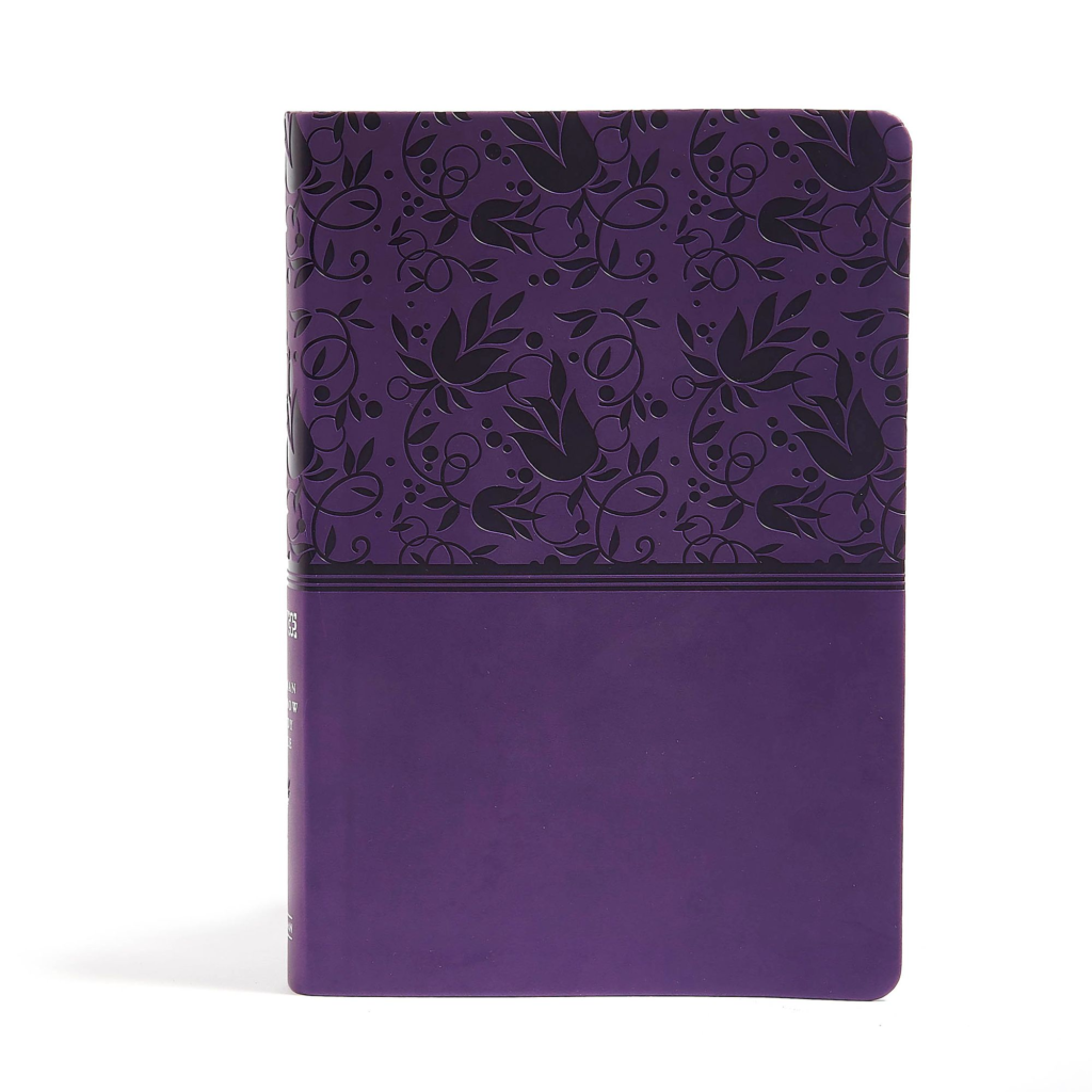 NIV Rainbow Study Bible, Purple LeatherTouch