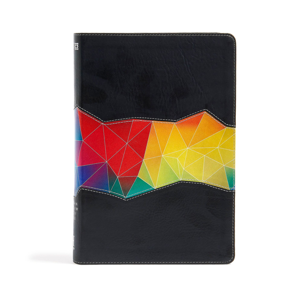 NIV Rainbow Study Bible, Kaleidoscope Black LeatherTouch Indexed