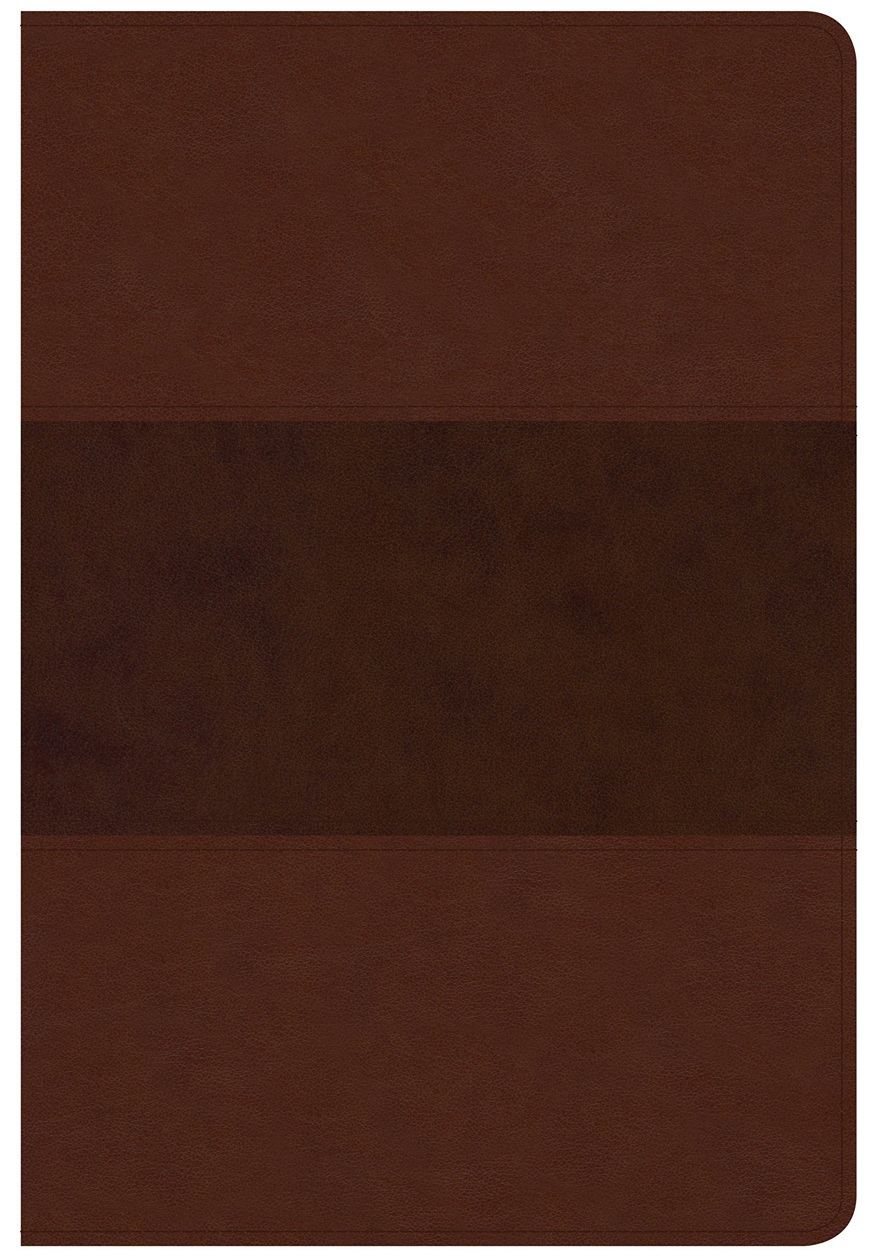 CSB Giant Print Reference Bible, Saddle Brown LeatherTouch, Indexed