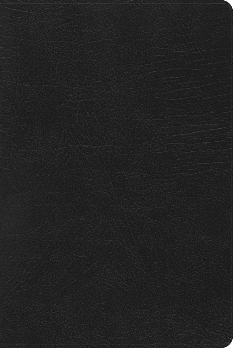 RVR 1960 Biblia de Estudio Arco Iris, negro piel fabricada con índice
