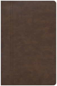 CSB Restoration Bible