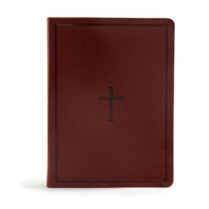 KJV Study Bible, Brown LeatherTouch