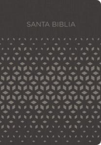 NVI Biblia para Regalos y Premios, negro/plata símil piel
