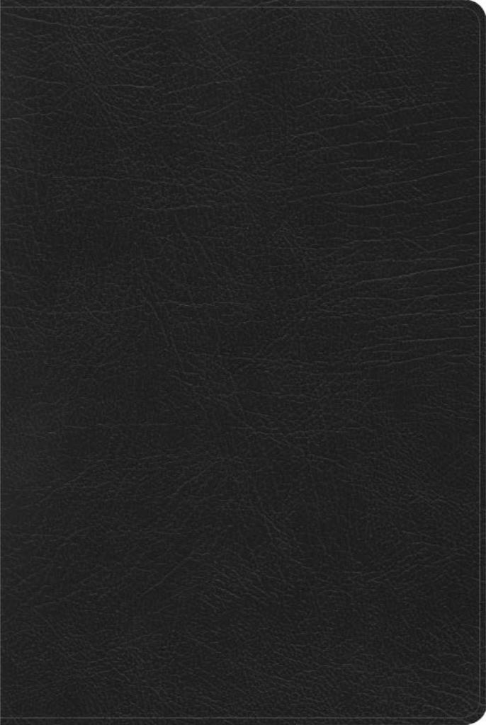 RVR 1960 Biblia de Estudio Arcoiris, negro símil piel con índice