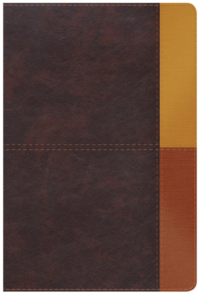 RVR 1960 Biblia de Estudio Arcoiris, cocoa/ terracota símil piel