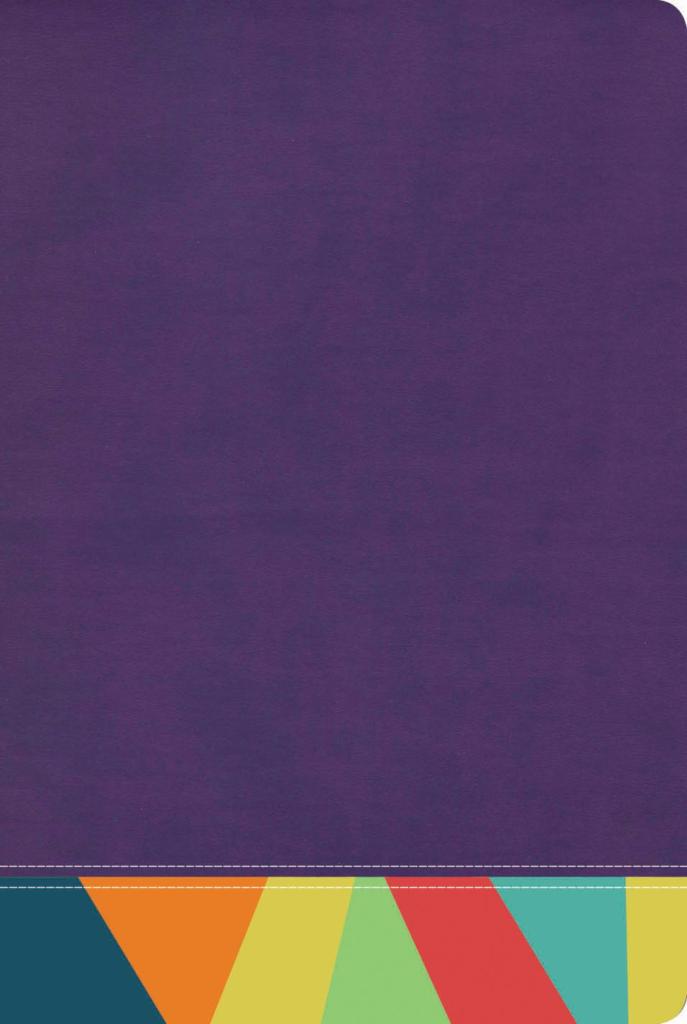 RVR 1960 Biblia de Estudio Arcoiris, morado/multicolor