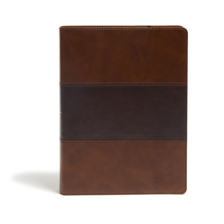 KJV Study Bible, Full-Color, Saddle Brown LeatherTouch