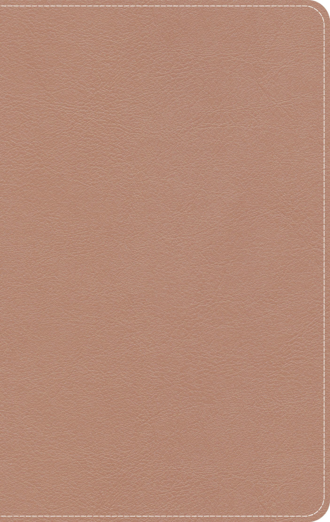 KJV On-The-Go Bible, Personal Size, Rose Gold LeatherTouch