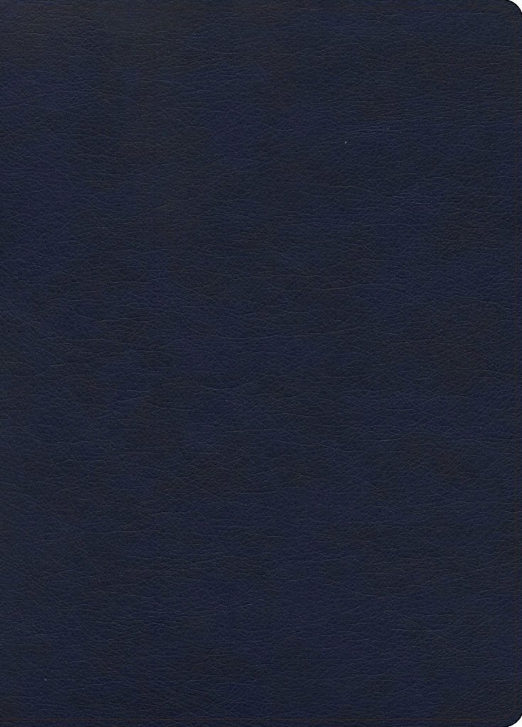 KJV Study Bible, Full-Color, Navy LeatherTouch
