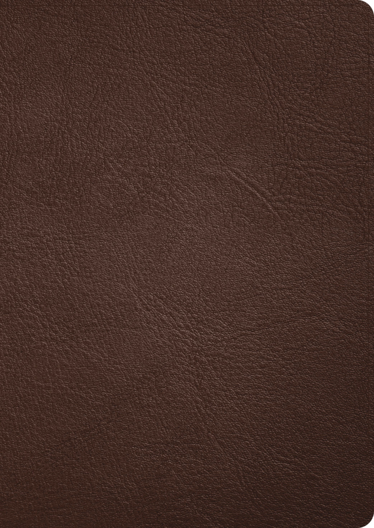 CSB Verse-by-Verse Reference Bible, Holman Handcrafted Collection, Brown Goatskin Leather