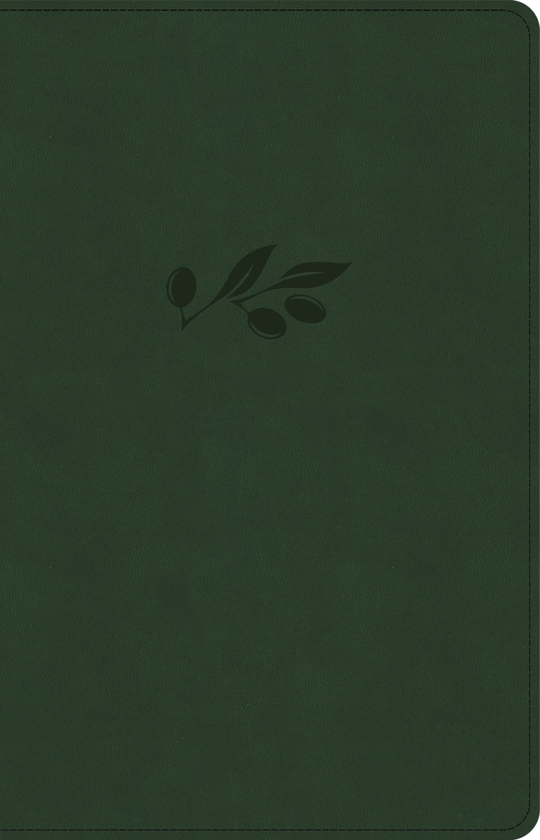 NASB Large Print Personal Size Reference Bible, Olive LeatherTouch