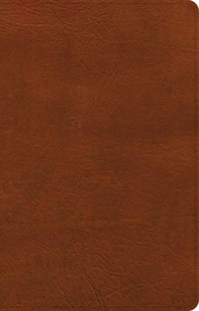 NASB Large Print Personal Size Reference Bible, Burnt Sienna LeatherTouch