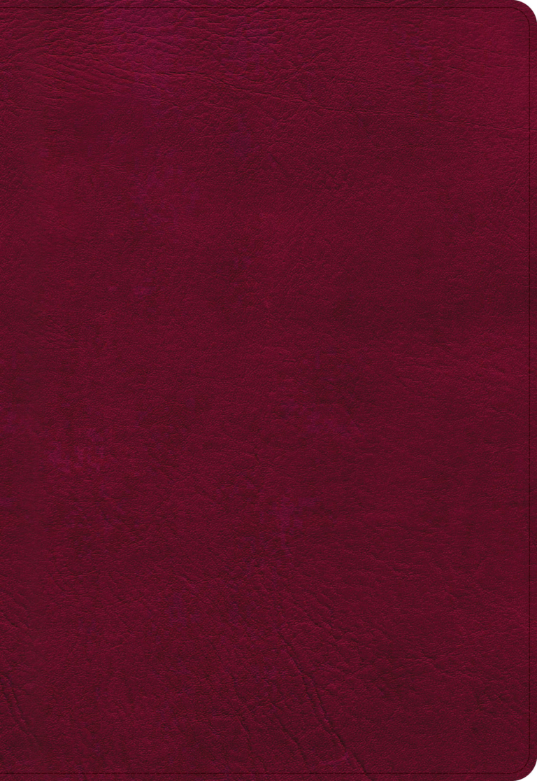 NASB Super Giant Print Reference Bible, Burgundy LeatherTouch