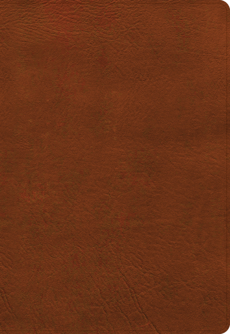 NASB Super Giant Print Reference Bible, Burnt Sienna LeatherTouch