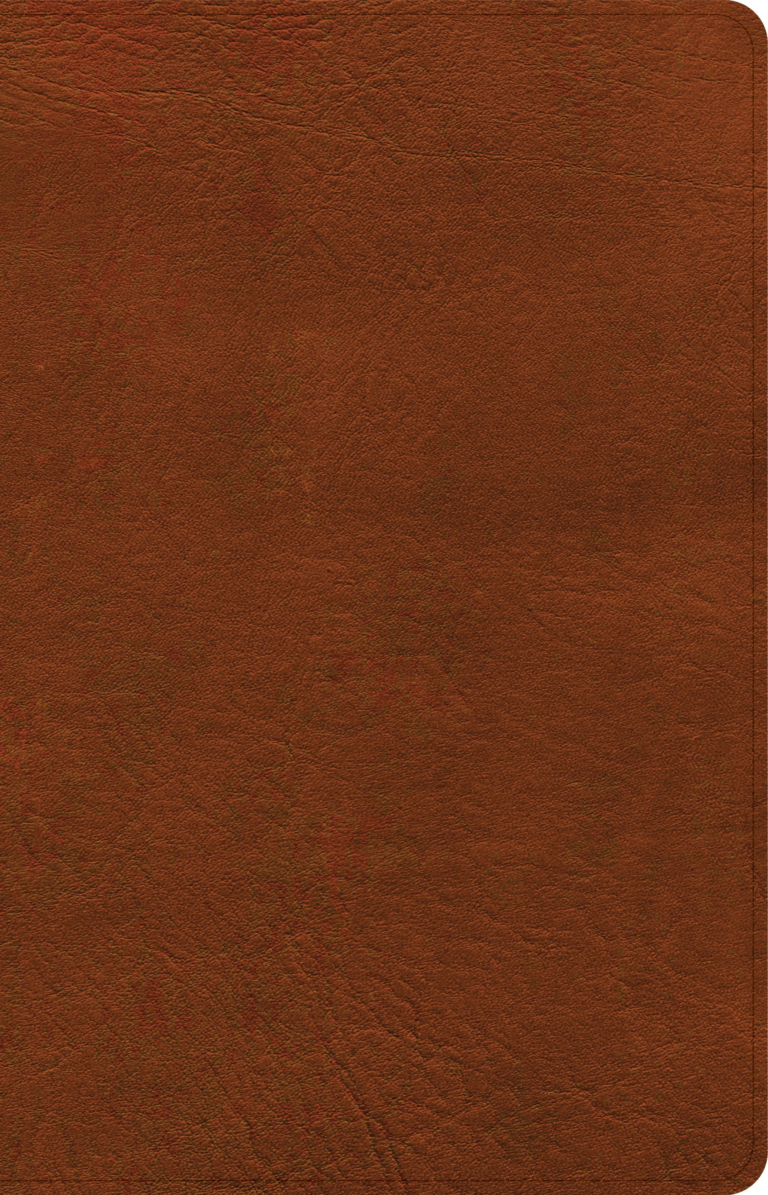 NASB Large Print Personal Size Reference Bible, Burnt Sienna LeatherTouch, Indexed