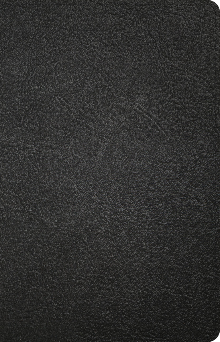 NASB Large Print Personal Size Reference Bible, Black Genuine Leather Indexed