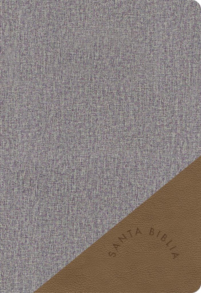 RVR 1960 Biblia Letra Grande Tamaño Manual gris y marrón, símil piel
