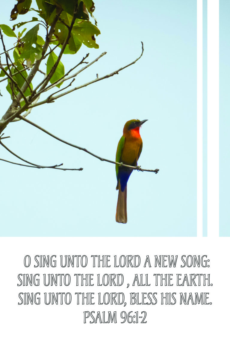Sing Unto The Lord  Bulletin (Pkg 100) General Worship