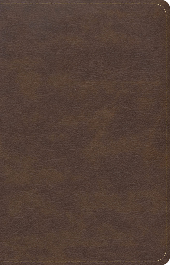CSB Single-Column Compact Bible, Brown LeatherTouch