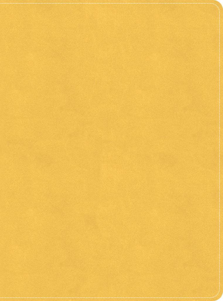 CSB Lifeway Women's Bible, Marigold LeatherTouch, Indexed