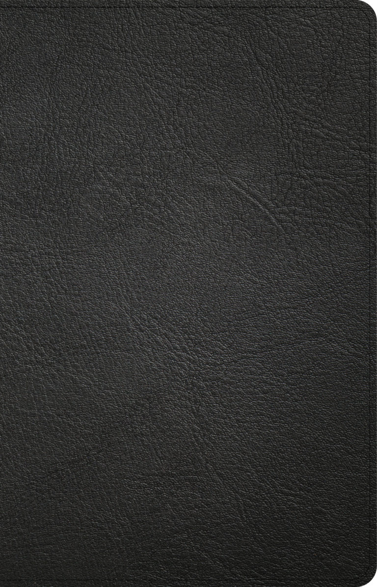 NASB Large Print Personal Size Reference Bible, Black Genuine Leather