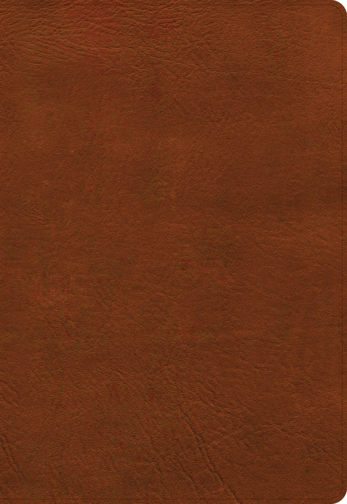 NASB Super Giant Print Reference Bible, Burnt Sienna LeatherTouch, Indexed
